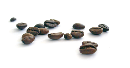 ECT coffee beans image-01